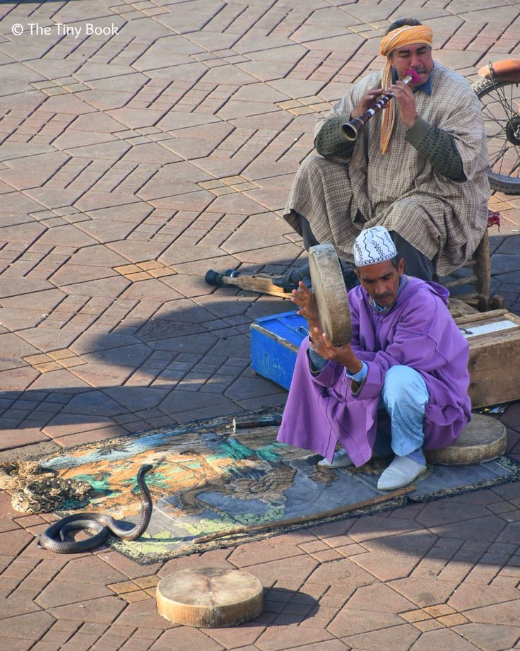 Marrakech, Land of God? Snake charming