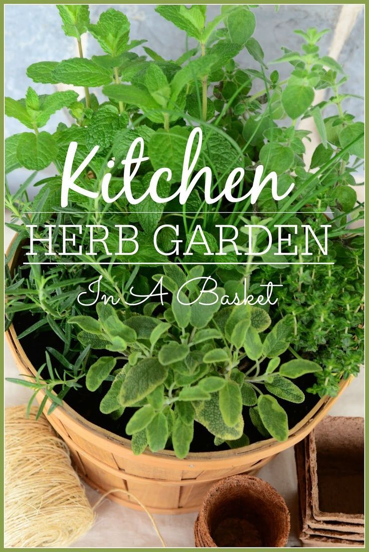 A smart and easy way to start a kitchen herb garden... right in a basket! stonegableblog.com