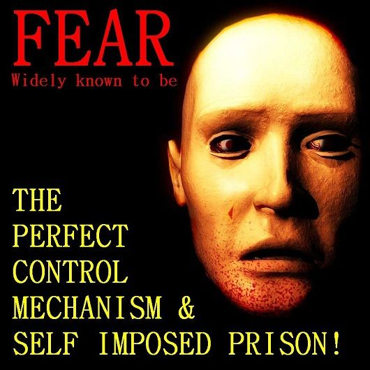 Trippping Lissy: Fear ~ The Self Imposed Prison FREE YOURSELF