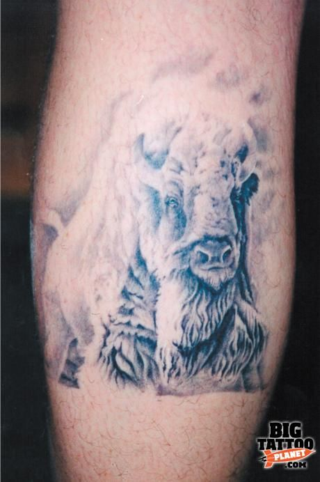 white buffalo tattoo designs hot rod tattooing ohio