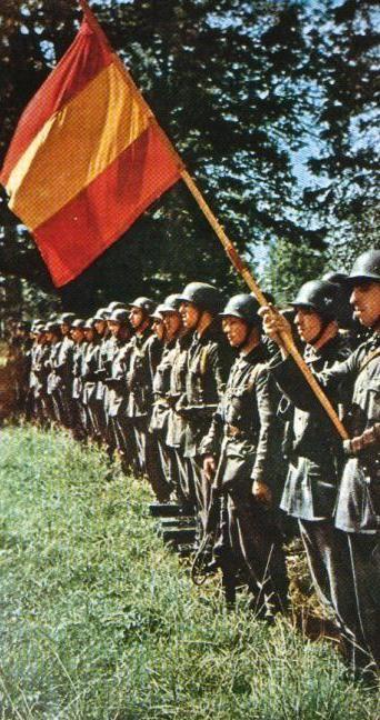 La 250.ª División de Infantería de la Wehrmacht, más conocida como la División Azul, fue un cuerpo de voluntarios españoles que luchó en el Frente Oriental durante la Segunda Guerra Mundial