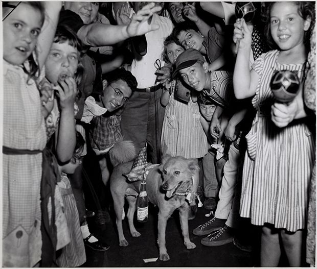 """Victory Pup"", August 14, 1945 | Ascher Fellig (Weegee)"