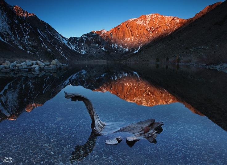 Driftwood: Spaces, Driftwood, Mammoth Lakes, Convict Lakes, Favorite Places, Breath Tak Photos, Lakes Reflection, Dmitri Fomin