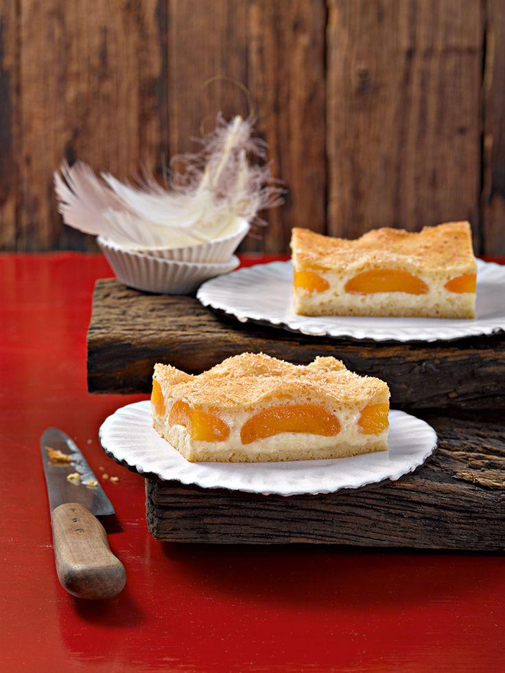 Leckerer Kuchen vom Blech mit feiner Kokos-Note