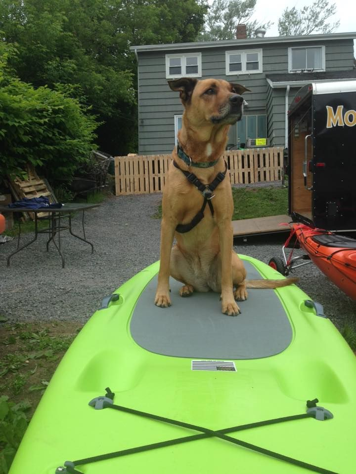 About Moxie's Riverside Rentals