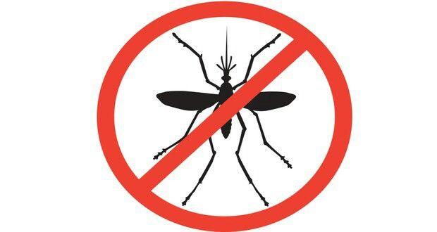 #mosqito #dengue #malaria #stayaware