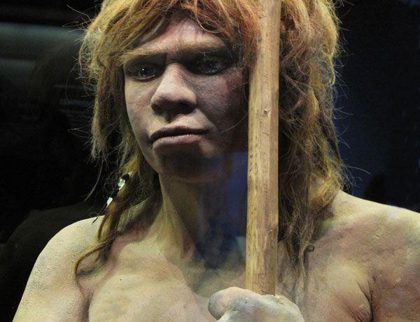 El enigma de la nariz del neandertal, resuelto