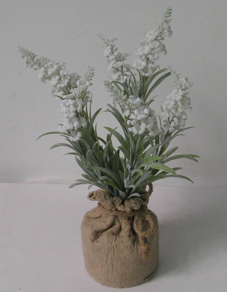 lavender in paper mache pot , nice silk white  lavender