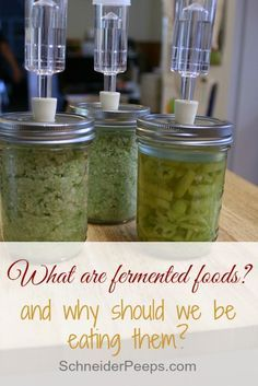 Fermented foods are a wonderful way to get probiotics in your diet. They are super easy and frugal to make and will help with digestion and nutrition.