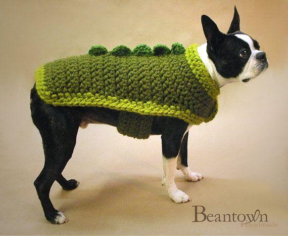 Soy un dragon-perro   Ropa tejida para perro y gato