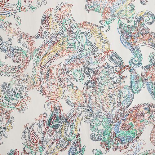 Multicolor Paisley Shower Curtain