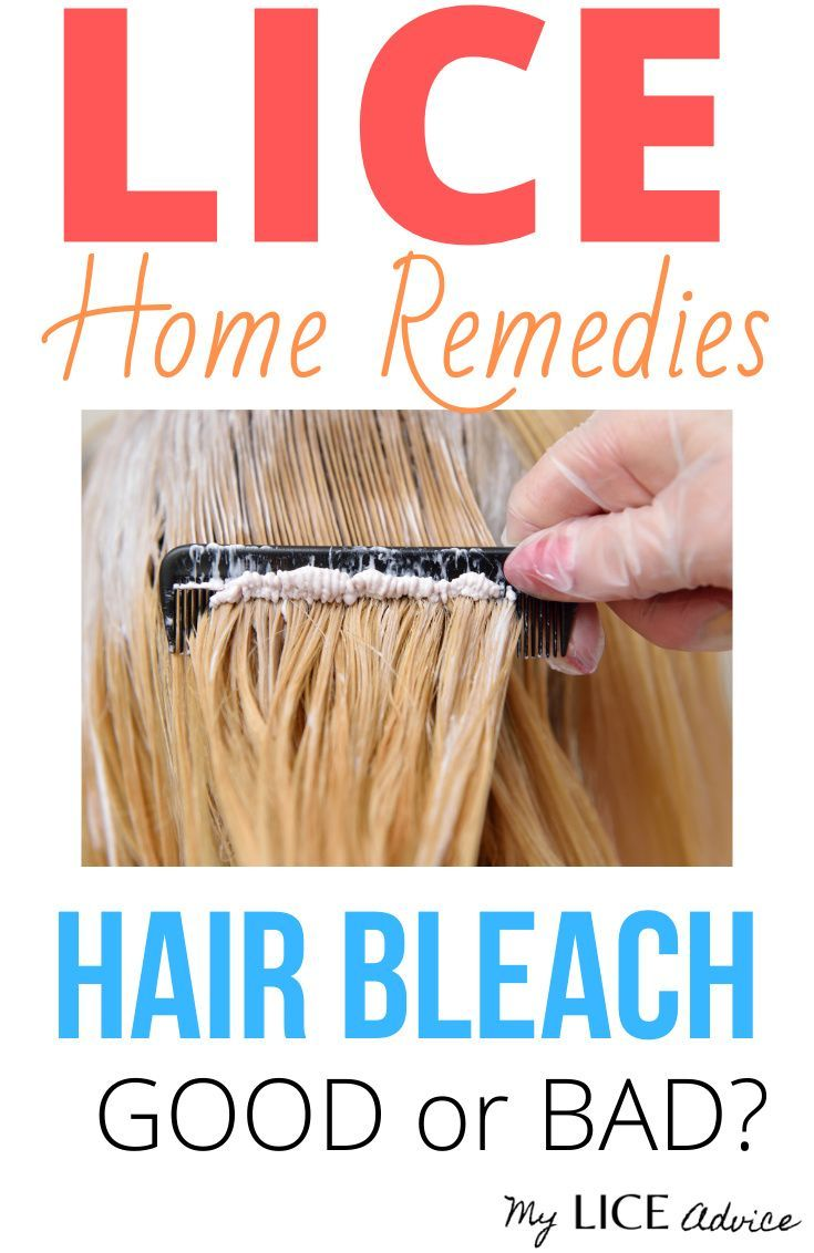 Does Bleach Kill Lice The Truth In 2020 Kill Lice Lice Remedies Lice Shampoo