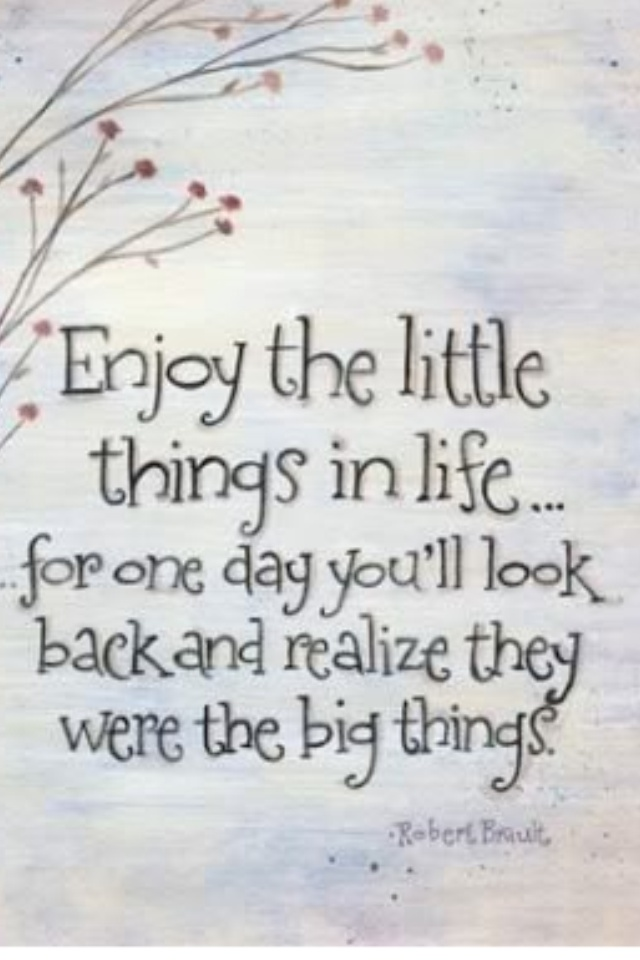 saying: Life Quotes, Little Things, Remember This, Truths, So True, Enjoy, Favorite Quotes, Inspiration Quotes, Quotes About Life