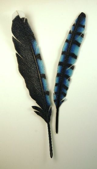 """Blue Jay (Stellar Jay), 2010, kiln formed glass, pair, 48""""H X 22""""W, Michael Dupille. Notice the size!"""