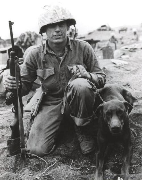 ww ii soldier and his doberman war dog more