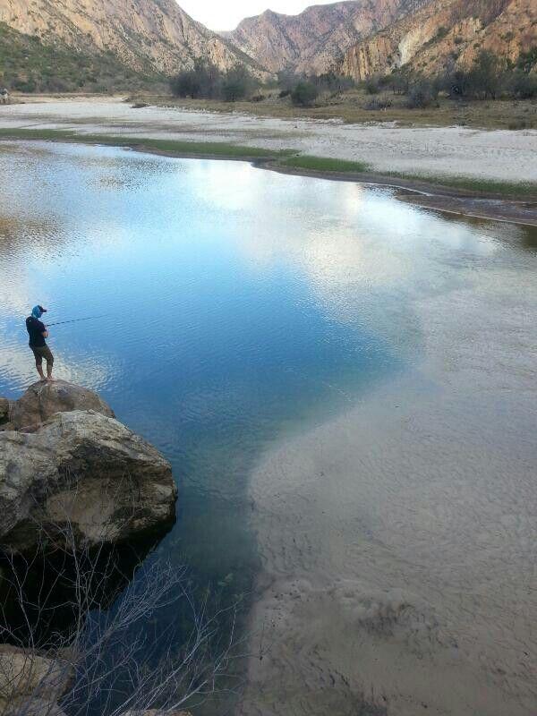 Lonely fisher, Baviaans