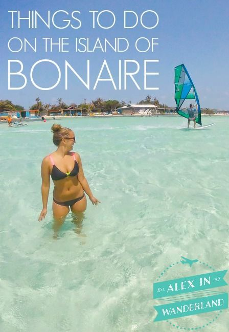 Bonaire may be a diver's paradise, but there's so much to see and do above sea level too!  Check out my top 7 Bonaire adventures for non-divers