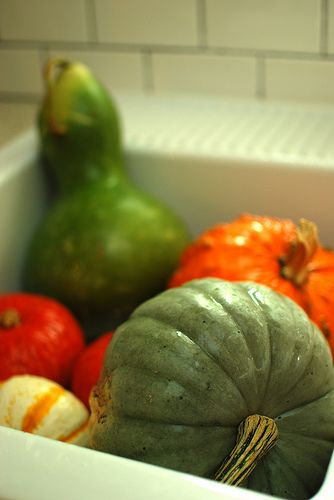 How to preserve pumpkins and gourds