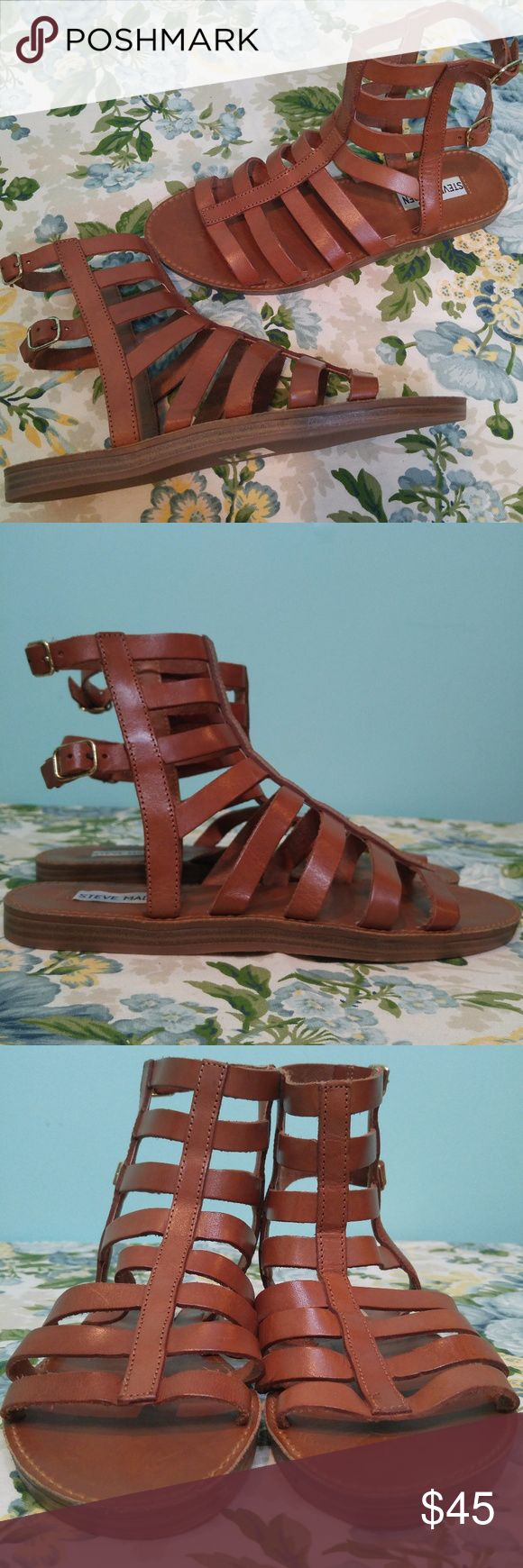 STEVE MADDEN Beeast Brown Leather Gladiator Sandal BRAND: Steve Madden  CONDITION DESCRIPTION: Gently used condition, minor wear. Please view all pictures for more details.  SIZE: Women's 8 8M   MEASUREMENTS (approximate):  Heel height – ¼ inch  STYLE: 'Beeast', side buckle closure  COLORS: Brown Colors shown in pictures may vary slightly from the actual item, due to different lighting and/or screen resolutions.   MATERIALS: Leather upper, rubber outsoles  STORAGE ENVIRONMENT: Smoke-free…