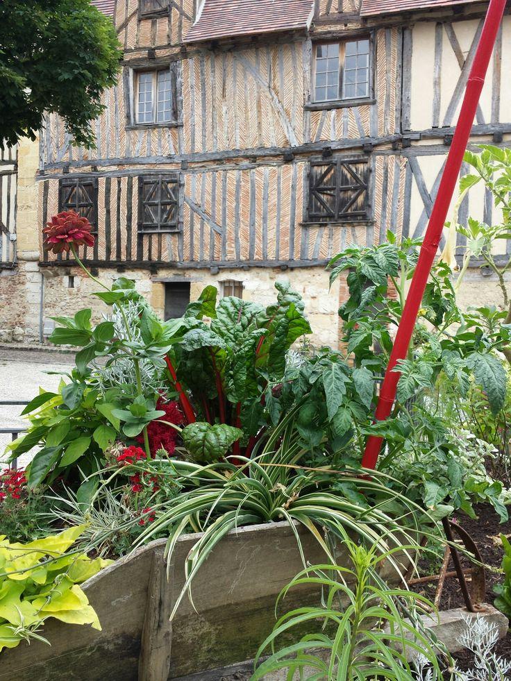 Fabulous summer planting all around Bergerac