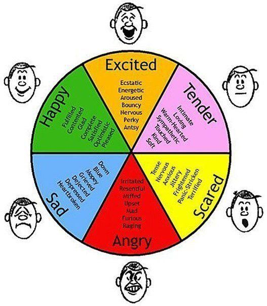 Essay on Emotions: Definition, Characteristics and Importance