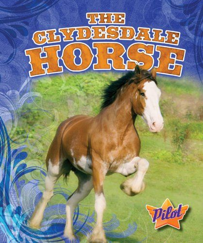 Pin by Just Horse Crazy on Clydesdale Horse Gifts | Clydesdale horses, Horses, Clydesdale