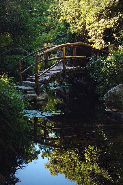 Holzbrüggli über Teich