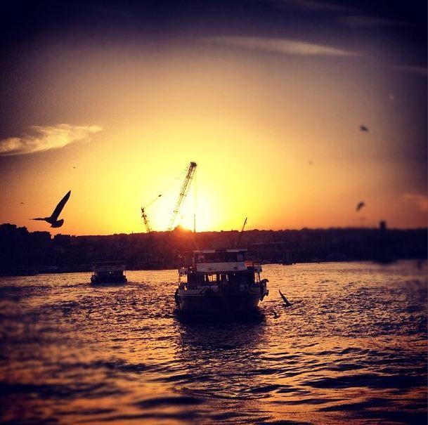 #istanbul #sunset #boat #gull