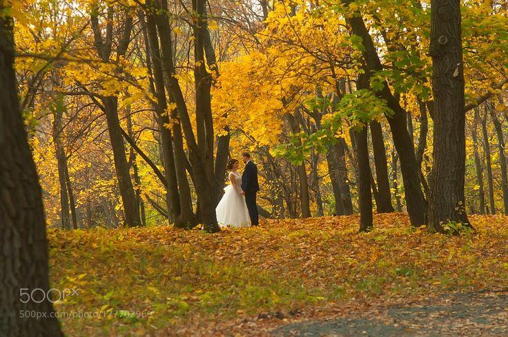 Жених и невеста by figl2yra0q