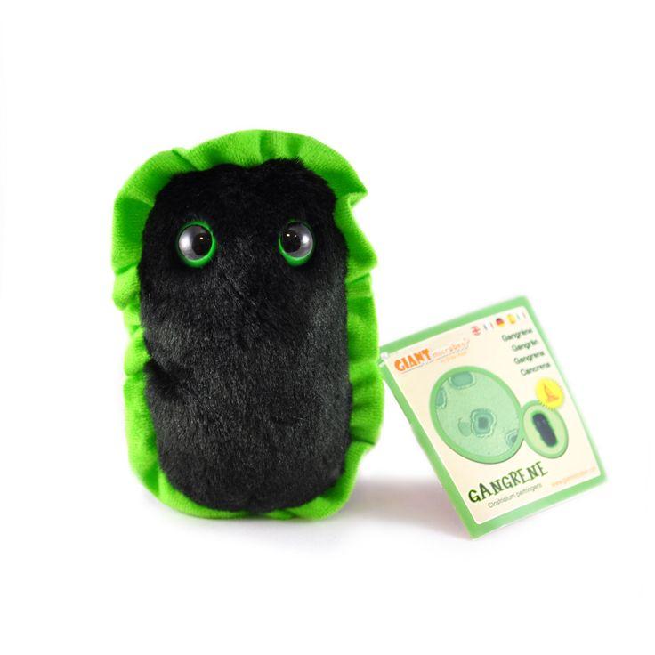 Gangrena jest pluszakiem kolorem, kształtem i wyglądem przypominającym żywą bakterię wywołującą obumieranie tkanek miękkich. Jest od niej jednak znacznie większa – mierzy 13 cm.