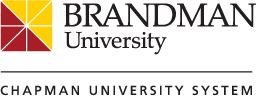 BSN to DNP, Neonatal Nurse Practitioner Program now available at Brandman University