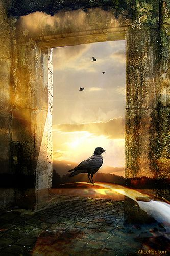 When approaching an unfamiliar door, we may as well imagine good things awaiting our entrance.