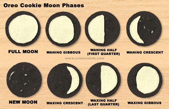 Moon Phases...awesome science activityHarvest Moon, Solar System, Science Lessons, Schools, Teaching Kids, Oreo Cookies, Oreo Moon, The Moon, Moon Phase