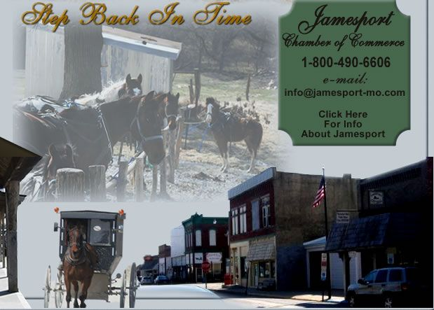 21 best THE AMISH OF JAMESPORT MO AND HERE & THERE images on