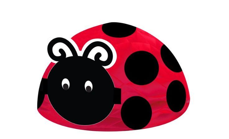 Ladybug Centrepiece