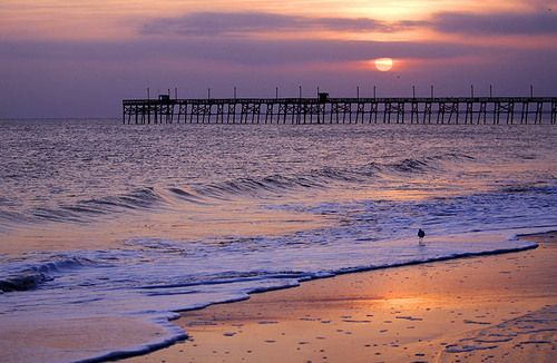 1000 ideas about oak island on pinterest treasure of for Nc fishing piers
