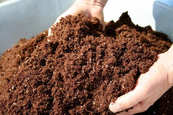 Voy a ver si puedo aplicar estas ideas en mi casa. Saludos!  http://www.visitacasas.com/jardin/preparacion-de-un-abono-casero-para-las-plantas/
