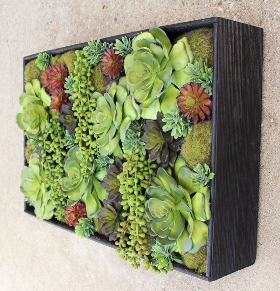 1000 Images About Succulent Frame On Pinterest