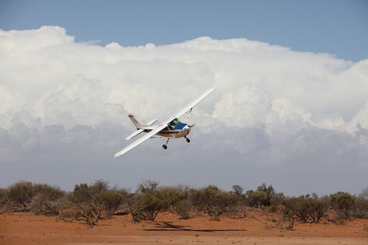 f/4 1/400 ISO-100 200mm Aerial mustering - husband giving me a photo opportunity.