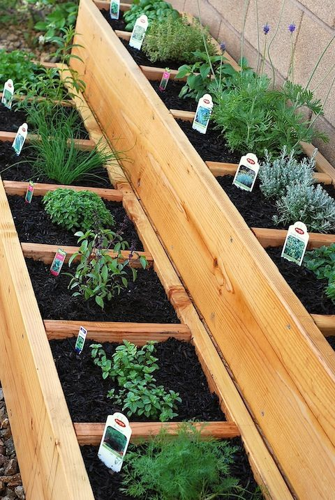 Container garden in a raised bed.  Link to diy instructions on building the bed.
