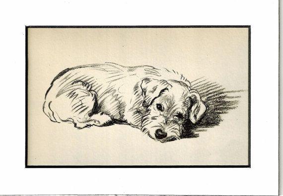 MATTED Puppy Print, Antique Dog PRint,Lucy Dawson, 5x7 Mounted Print  1930s Terrier Print, black & white Wall Decor, Antique Decor, B-5