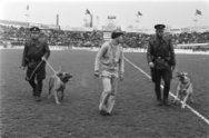Politie-agenten met honden begeleiden roerige supporters van het veld