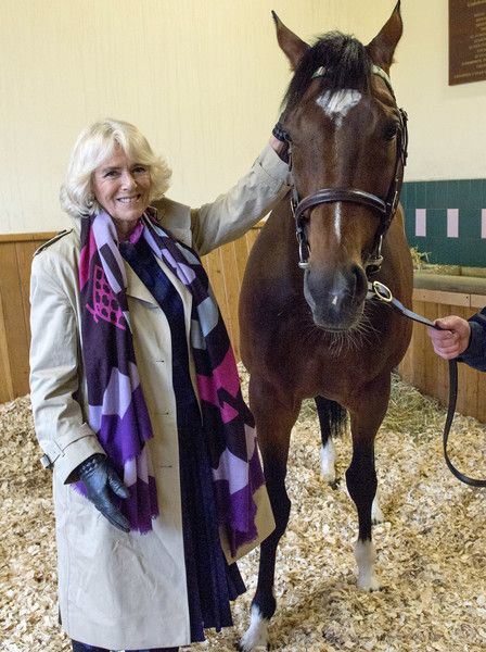 Camilla Parker Bowles Photos Photos - Camilla, Duchess of Cornwall, Honorary Member of the Jockey Club, meets wonder horse Frankel and stallion man Rob Bowley at Banstead Manor Stud on March 22, 2017 in Newmarket, United Kingdom. - The Duchess of Cornwall Meets Racehorse Frankel in Newmarket