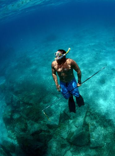 17 best images about spearfishing on pinterest for Best fishing in florida keys
