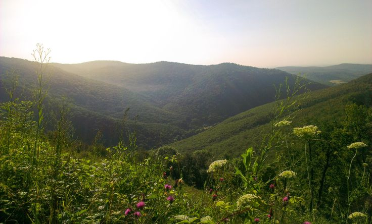 Bükki Nemzeti Park in Hungary