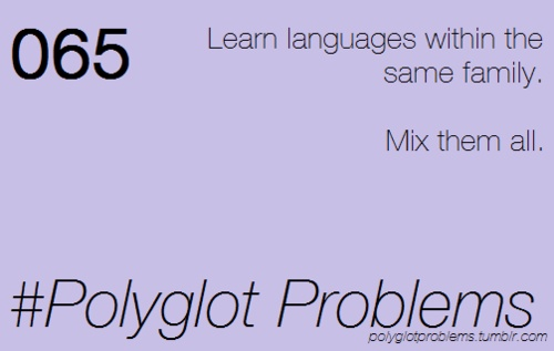 Polyglot Problems: Learn languages within the same family. Mix them all | Img @ Polyglot Problems.