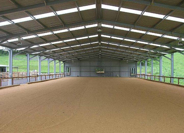 Outdoor Arena Lighting: indoor arena with a glass walls for natural lighting and an outdoor ring to  the left of it,Lighting