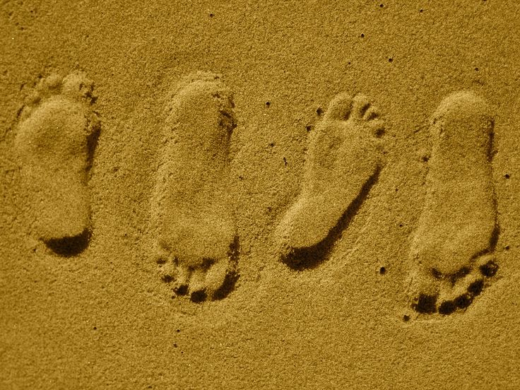 Der ökologische Fußabdruck   Definition, Berechnung, Ziel. Der ökologische  Fußabdruck Wird Oftmals Verschieden