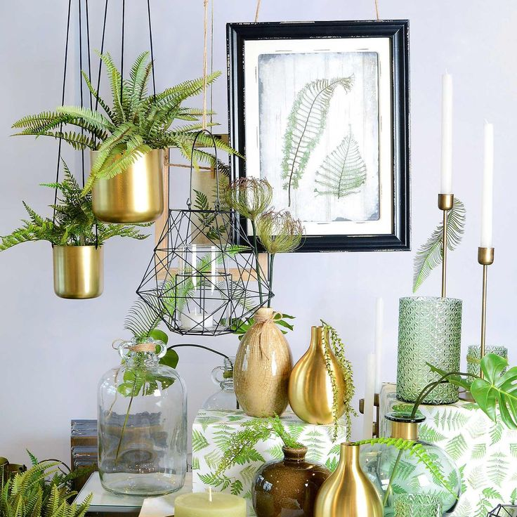 49 besten Hängepflanzen ♡ Wohnklamotte Bilder auf Pinterest - wohnzimmer deko gold