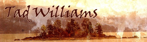 Anything Tad Williams writes is just amazing. That is, if you are a fantasy/sci-fi geek like me. i-like-big-books-and-i-cannot-lie